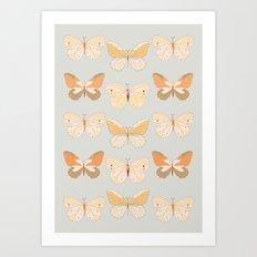 Lepidoptera Butterflies Art Print