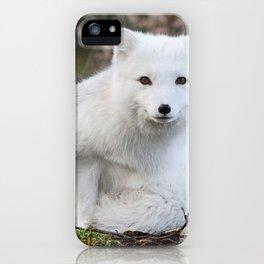 Polar Fox by Anne Elisabeth iPhone Case