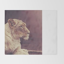 Lioness Throw Blanket