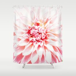 Pale Pink Dahlia Shower Curtain
