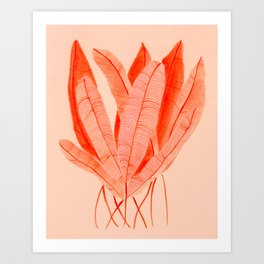 Feathered Palm Fronds Art Print