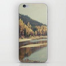 Autunno iPhone & iPod Skin