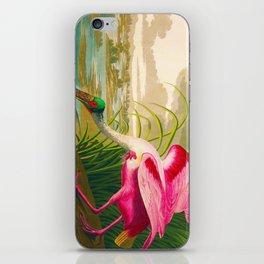 Roseate Spoonbill Bird pink iPhone Skin
