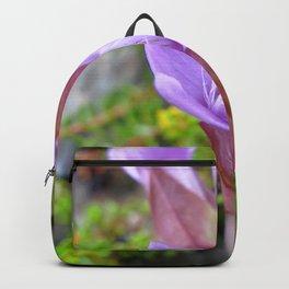 Watercolor Flower, Field Gentian 01, Northern Iceland Backpack