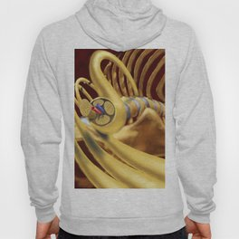 Spinal Nerves Hoody