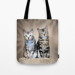 The Glare of the Silver Meowbles  Tote Bag