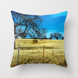 Along The Way In Clyde, Texas Throw Pillow