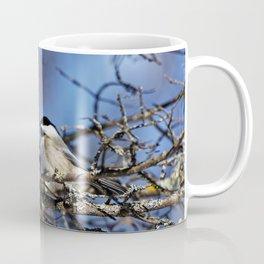 Black-capped Chickadee Holding a Seed Coffee Mug