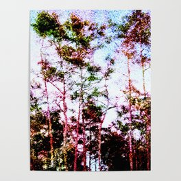 Everglades Noise Poster