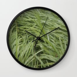 California Grass & Dew Wall Clock