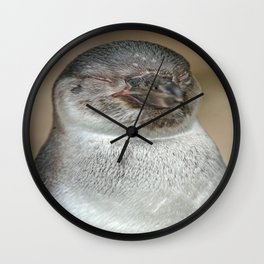 Sleepy Young Penguin Wall Clock