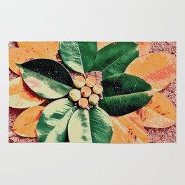 Peach and Flower Rug