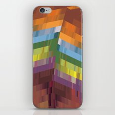 The Patterned Feather iPhone & iPod Skin