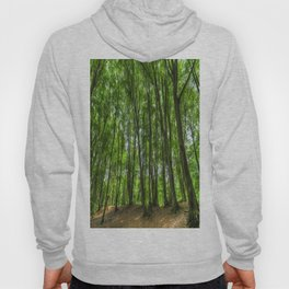 The Ancient Forest Hoody