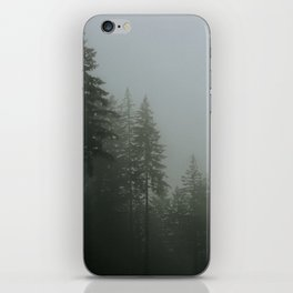tall trees iPhone Skin