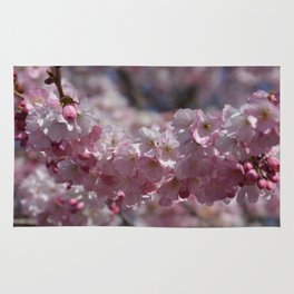 Early Spring Blossoms Rug