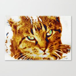 Strays need love too Canvas Print