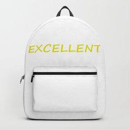 Excellent Backpack