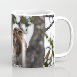 Birds from Pantanal Caburé Coffee Mug