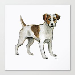 Jack Russell Terrier Canvas Print