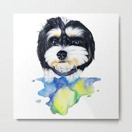 Shih tzu puppy Metal Print