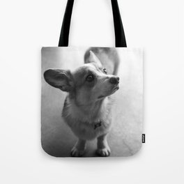 Jake The Corgi Tote Bag