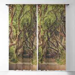 Mysterious Woods Blackout Curtain