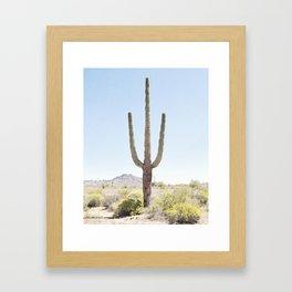 Lone Cactus Framed Art Print