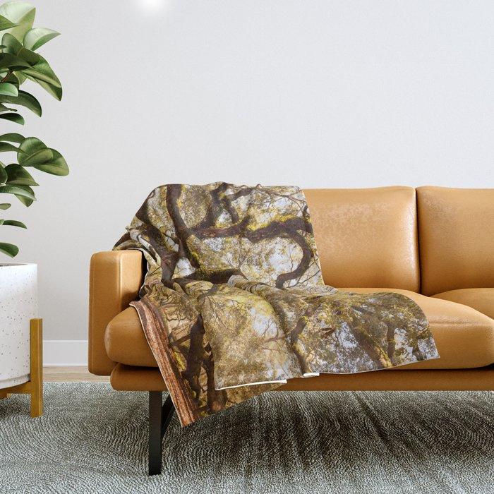Angel Oak 5 Throw Blanket