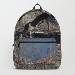 Goose walk Backpack