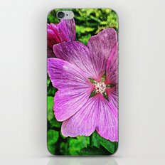 'SUMMER PETALS 2' iPhone Skin