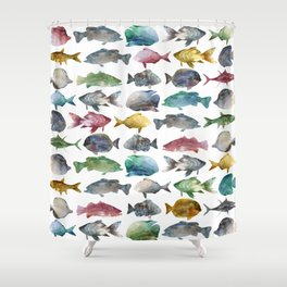 Suumer Color fishs Shower Curtain