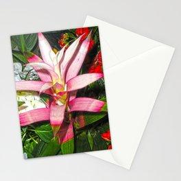 Bromelia Stationery Cards