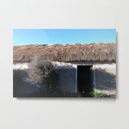 Bolivia door 2 Metal Print