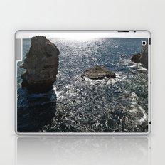 ----- Laptop & iPad Skin