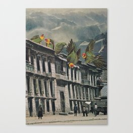 Visitors Canvas Print