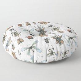 Entomology Floor Pillow