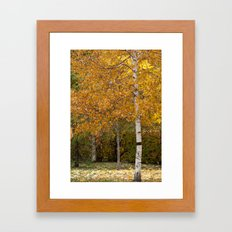 Autumn 72516 Framed Art Print
