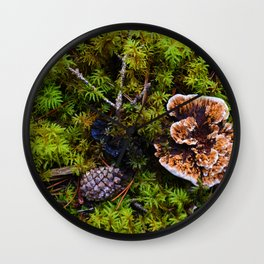 Understory of an Old Growth Lodgepole Pine Forest in Jasper National Park, Canada Wall Clock
