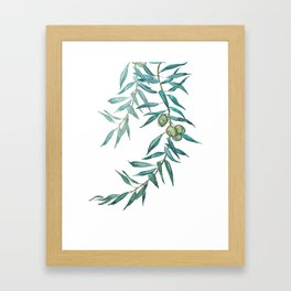 green olive leaf watercolor Framed Art Print