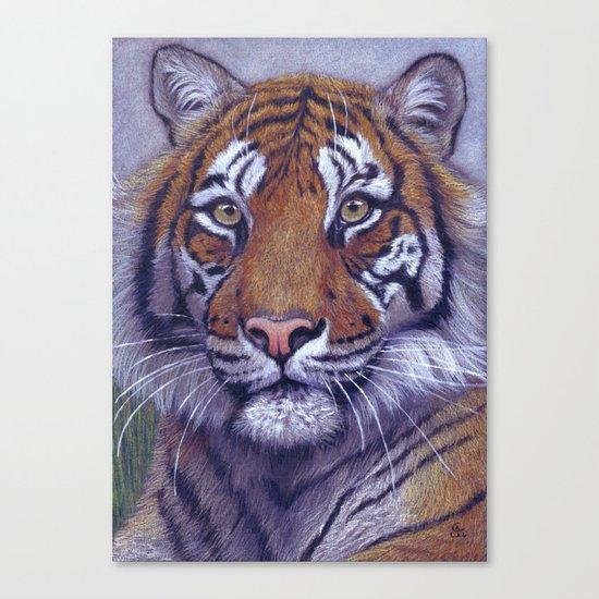 Tiger - portrait CC118 Canvas Print