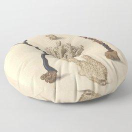 Naturalist Coral Floor Pillow