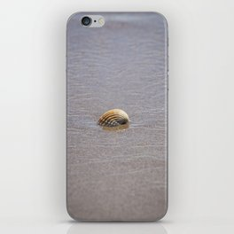 Seashell II iPhone Skin
