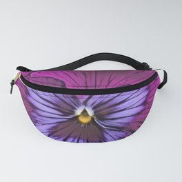 Pansy garden pansy type large hybrid plant cultivated Fanny Pack