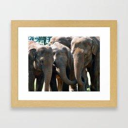 All Girls Together ! Framed Art Print