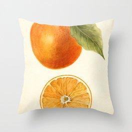 Vintage Painting of an Orange Throw Pillow