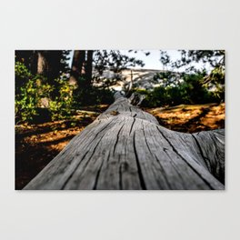 The Long Way Canvas Print