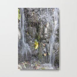 small watercourse, color photo Metal Print