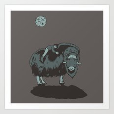 Muskox by moonlight Art Print