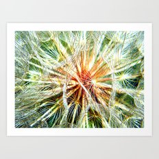 Up Close and Personal Dandelion Art Print